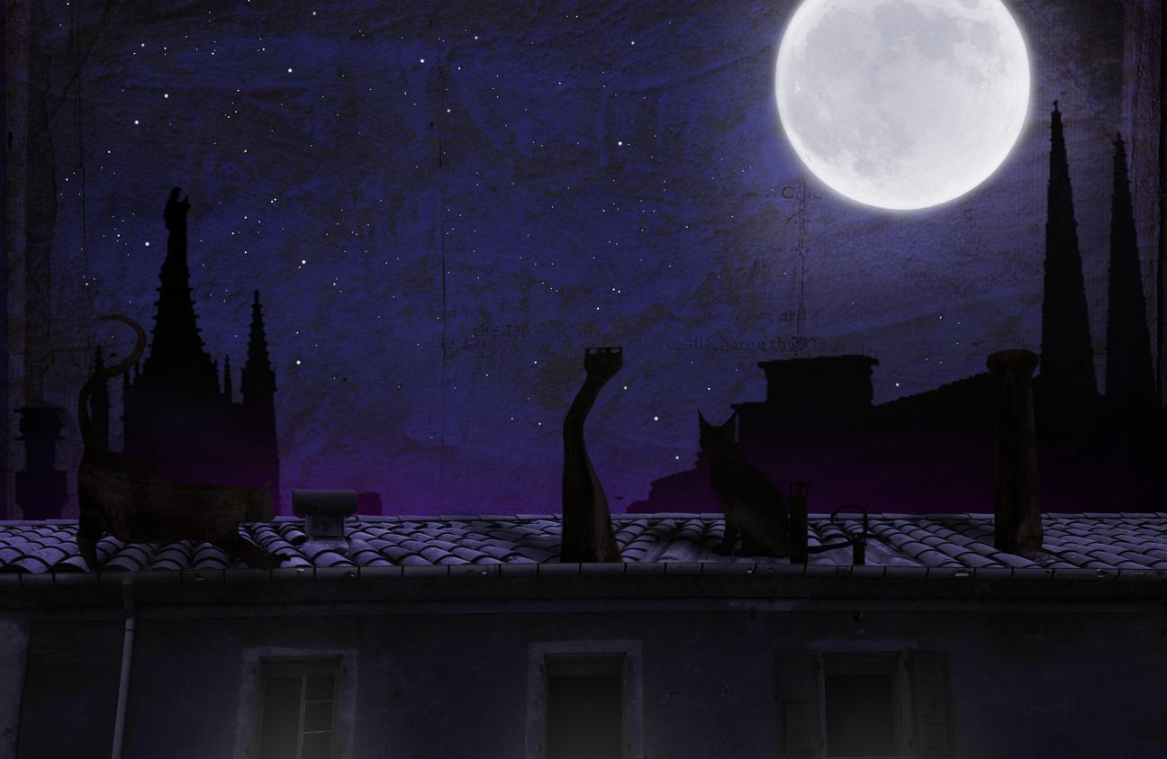 Illustration jeunesse Moonshadow